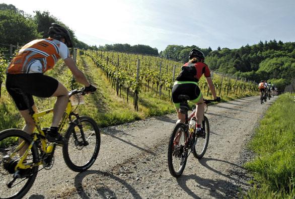 solemaremma-residence-escursioni-bicicletta-maremma